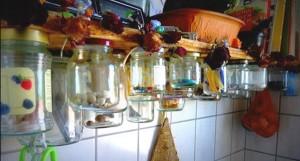 Marmeladengläser als Aufbewahrung am Regal anbringen