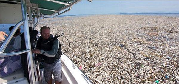 Plastik in der Karibik