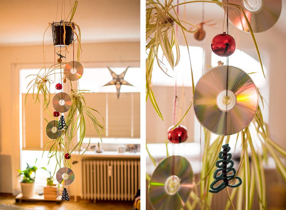 Die Weihnachtspflanze - Statt Weihnachtsbaum