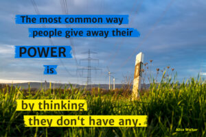 """""""The most common way people give away their POWER is by thinking they don't have any."""" Alice Walker"""