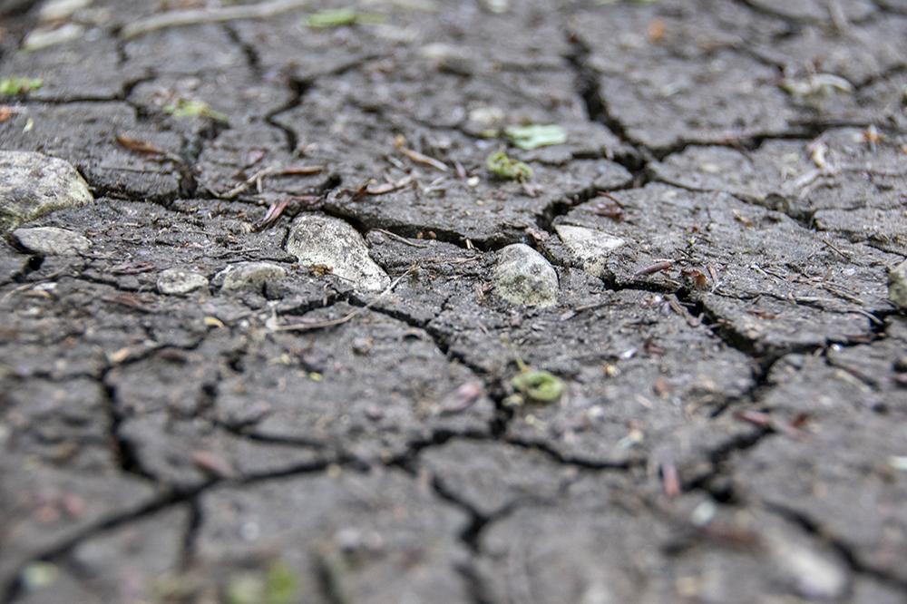 Rissiger, ausgetrockneter Erdboden